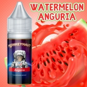 Monkeynaut Watermelon Flavour 10ml