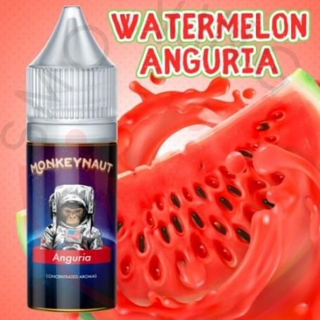 Monkeynaut Anguria Aroma 10ml