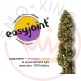 Easyjoint Seedless Combo Futura 75
