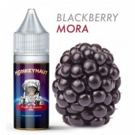 Monkeynaut Blackberry Flavour 10ml