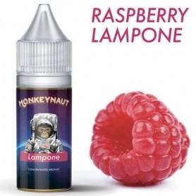 Monkeynaut Raspberry Aroma 10ml
