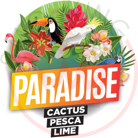 Jamplab Paradise Cactus Aroma 10 ml