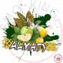 Artemisia Almaty Scomposto 10 ml