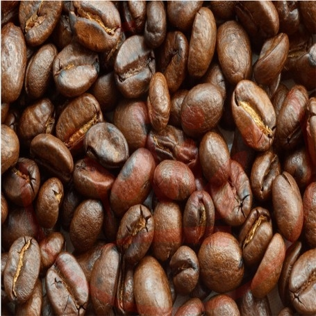 Azhad's Elixirs Caffè Aroma Concentrato