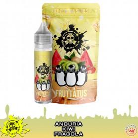 Fruttatus Aroma 20 ml Pinguini Galactika