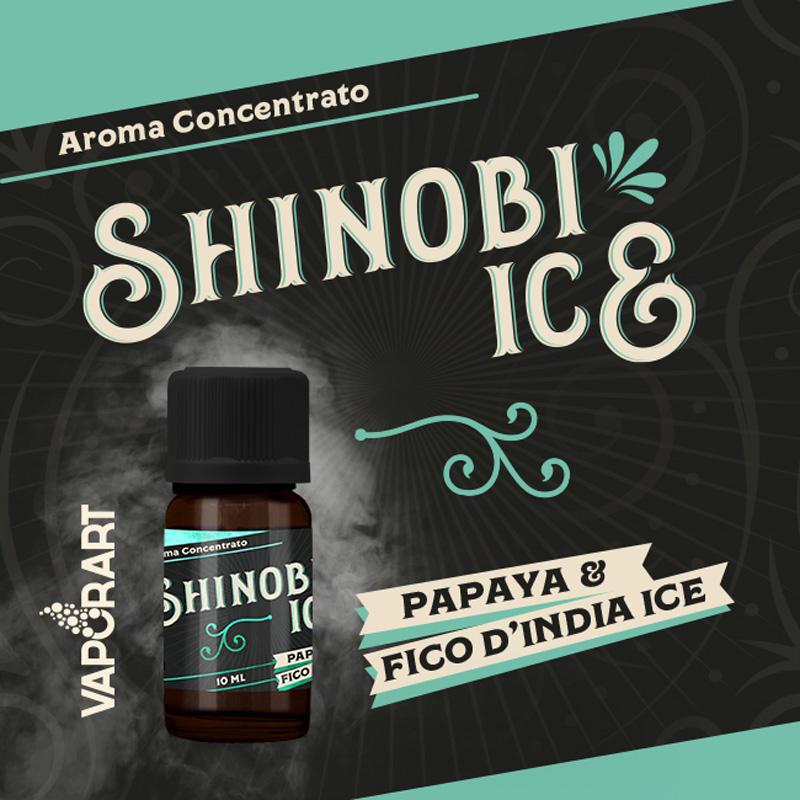 Vaporart Aroma Concentrato Shinobi Ice 10ml Liquido per Sigaretta Elettronica