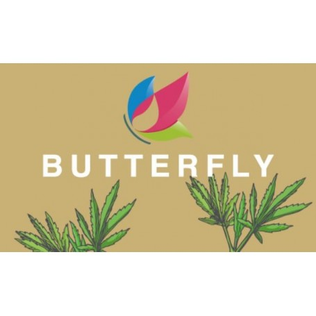 BUTTERFLY NATURAL FLAVOUR