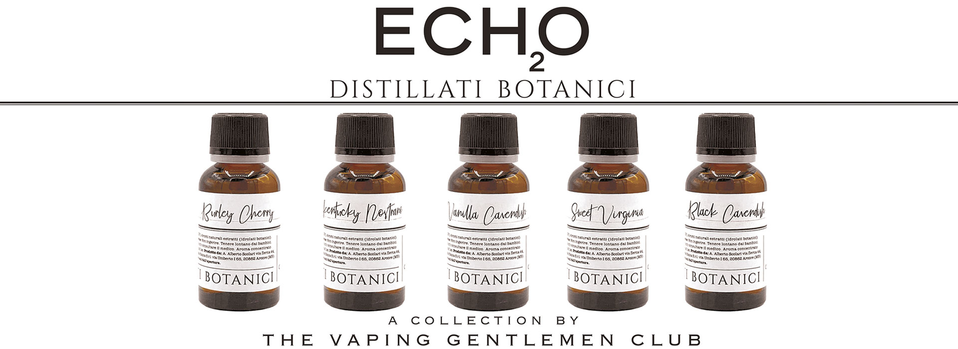 ECHO TVGC